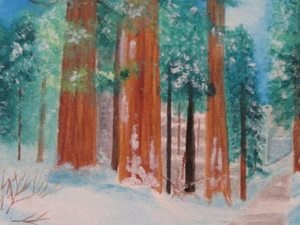 Sequoia Path