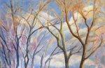 Warm Light In Treetops