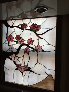 CherryBlossoms-back lit