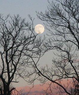 Full Moon over Shenandoah National Park